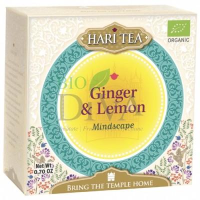 Ceai cu ghimbir și lămâie Mindscape Hari Tea