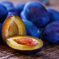 Extract de prune Organic