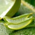 Gel de Aloe Vera Natural