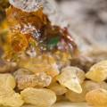Extract de arbore de tămâie frankincense (boswllia serata)