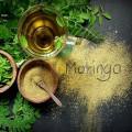 Ceai cu mentă și moringa Moringa & Peppermint