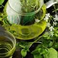 Ceai verde Hemp Higher Living