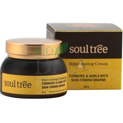 Cremă anitirid cu turmeric și amlă 60g Soultree