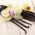 Balsam de buze cu vanilie