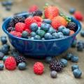 Extract din fructe de pădure Bio
