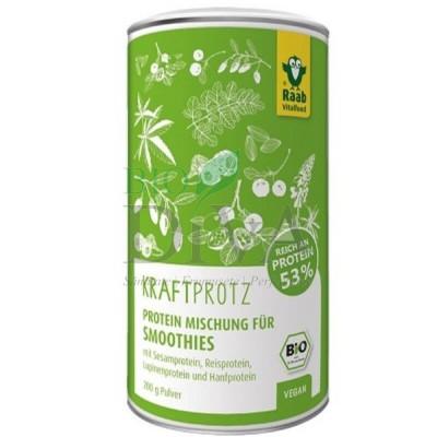 Protein plus mix proteic Raab Vitalfood