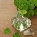 Spray bio împotriva înțepăturilor de insecte cu ulei de mentă