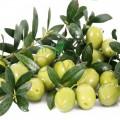 Deodorant bio cu frunze de măslin