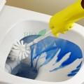 Spray ecologic pentru curățarea toaletei
