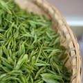 Frunze de arbore de ceai verde