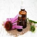 Extract natural de echinaceea