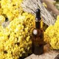 Extract vegetal natural de imortele