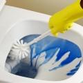 Detergent ecologic pentru toaletă